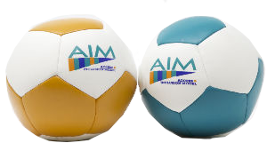 Audible Soft Foam Ball